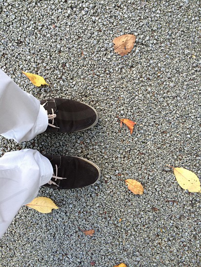 person in brown suede shoes photo