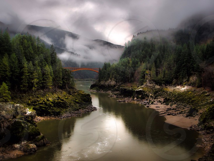 landscape photograph of river between trees photo