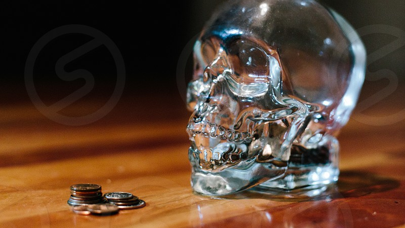 clear glass skull figure photo