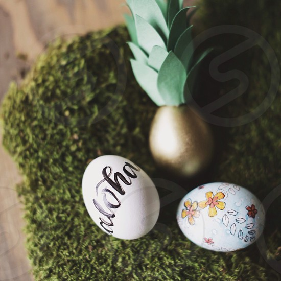 white printed eggs photo