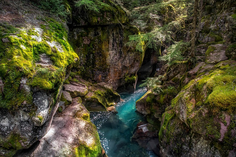 Looking into Avalanche Creek photo