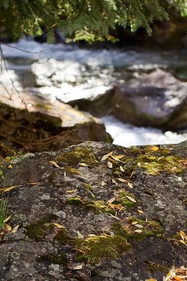 Castle Creek photo