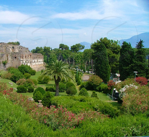 The gardens at Pompeii Italy photo