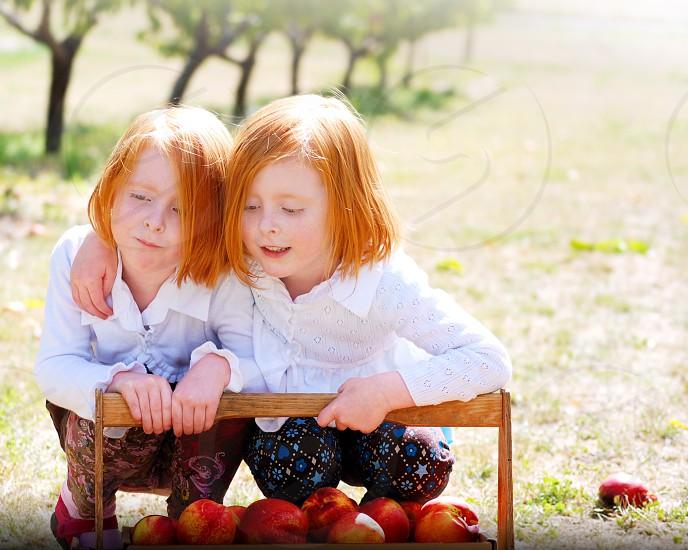 Twin sisters enjoying peach harvest on a warm autumn day photo