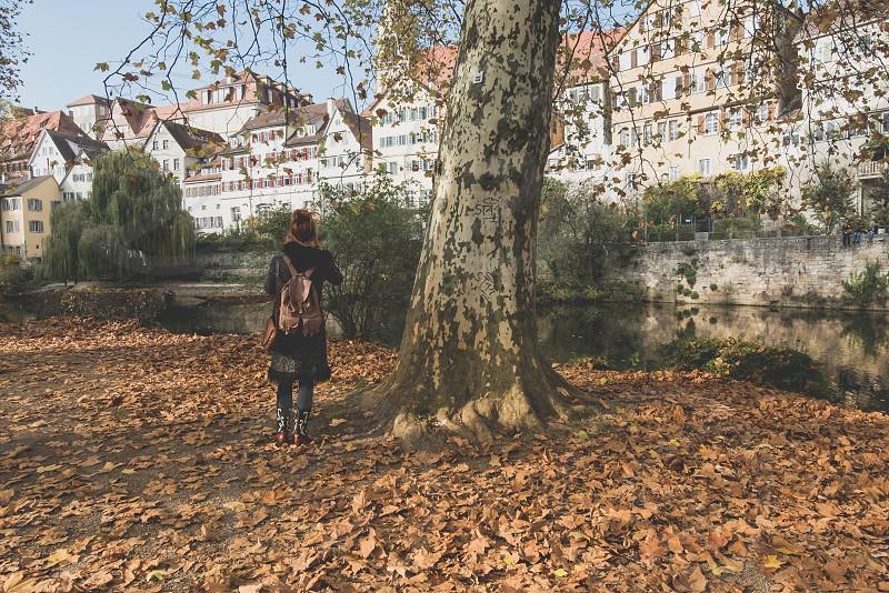 Autumn in German city park Tubingen photo