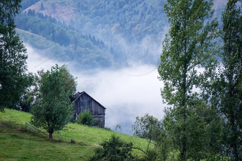 brown wooden house in the middle of grasslands photo