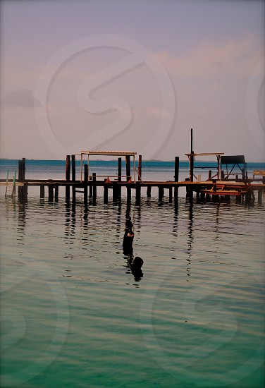 Negative space sky island boat dock bird on post Belize photo