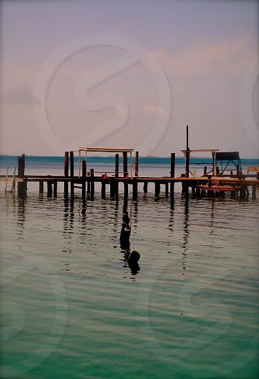 Belize water dock photo