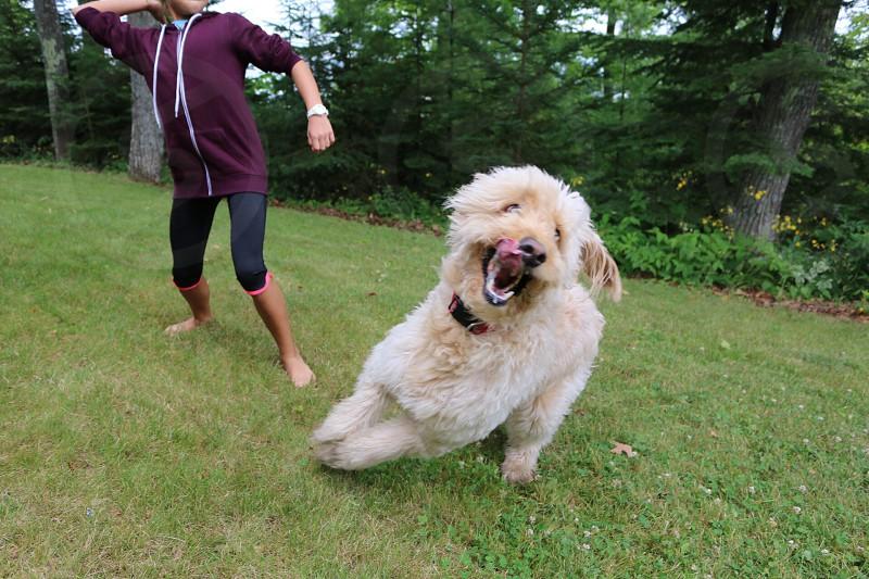 Girl throwing ball dog running  photo
