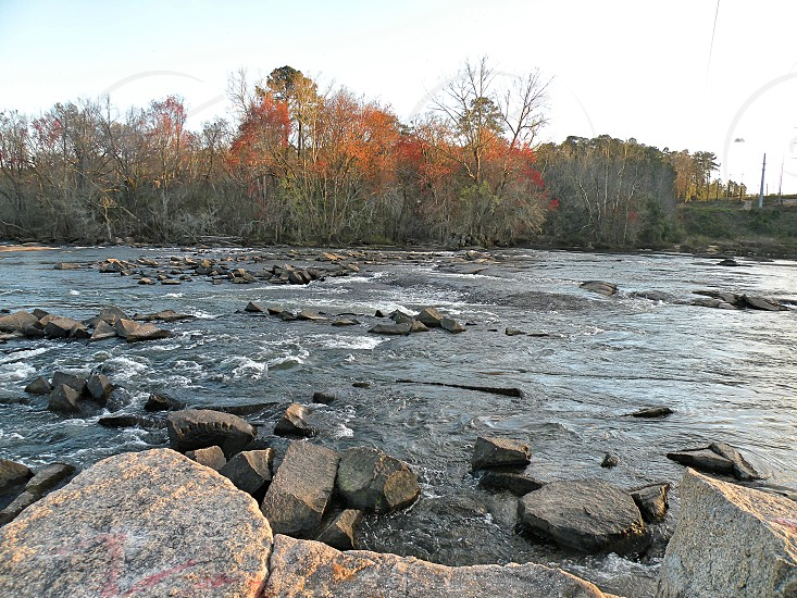 A beautiful shot of the Congaree river photo