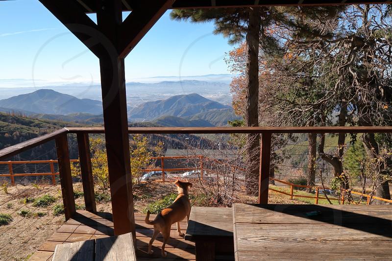 Peaceful cabin at Arrowhead California photo