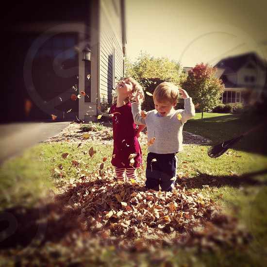 Toddlers playing in the leaves photo