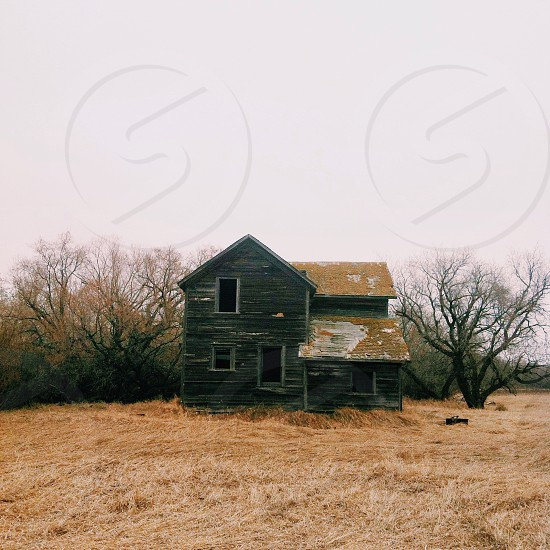 Abandoned house Canada Alberta  photo