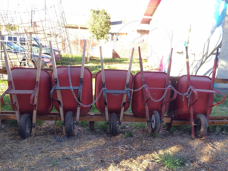 red wheelbarrow  photo