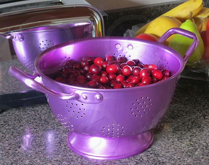 Cranberries in purple colander photo