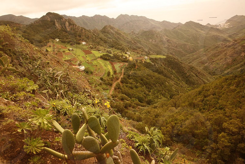 The Montanas de Anaga in the northeast of the Island of Tenerife on the Islands of Canary Islands of Spain in the Atlantic.   photo