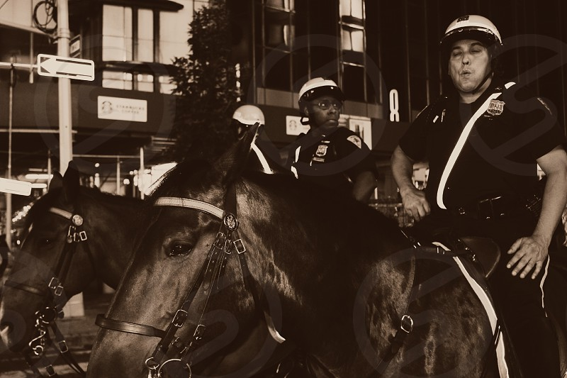 New York City Times Square NYPD mounted officers photo