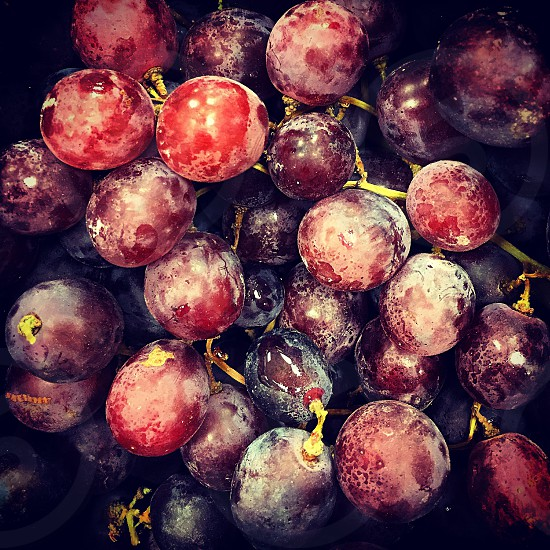 food snack fruit grapes red purple photo