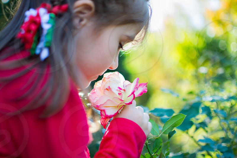 Stop and smell the roses... photo
