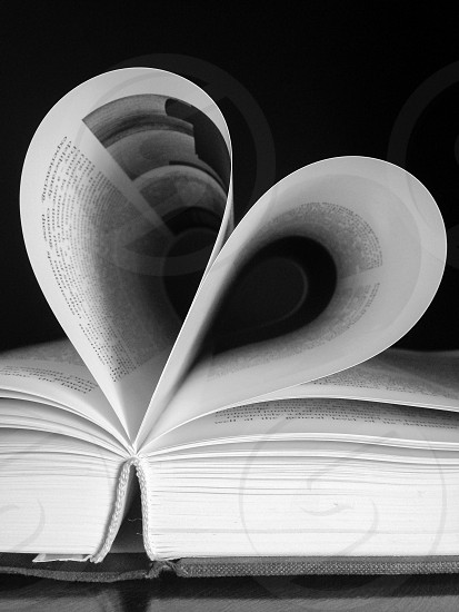 a love of reading photo