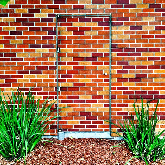 brown bricks wall photo