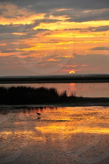 Beautiful summer sunset at a wildlife refuge photo