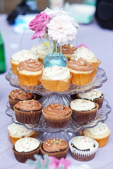 assorted cupcakes on display photo