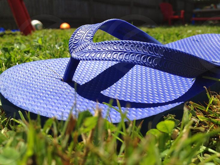 blue flipflop  photo