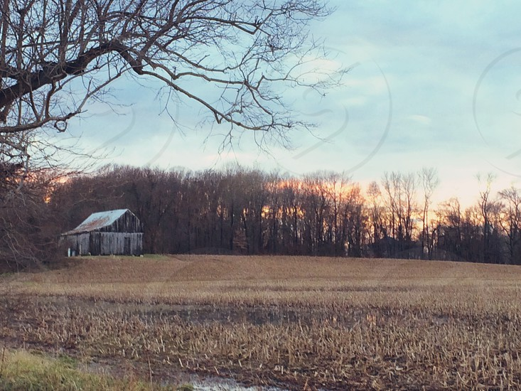 Farm country sunset landscape field barn faded trees photo
