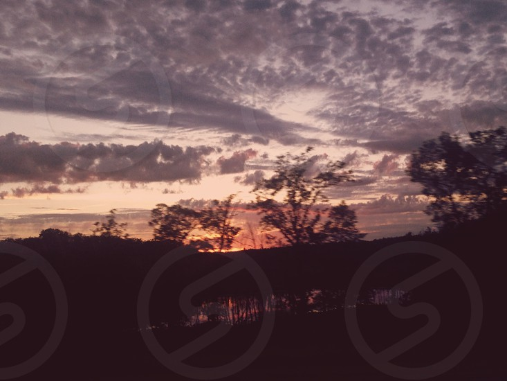 silhouette of trees during sunset under cloudy sky photo