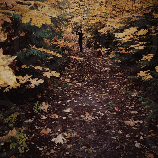 man in the forest photo