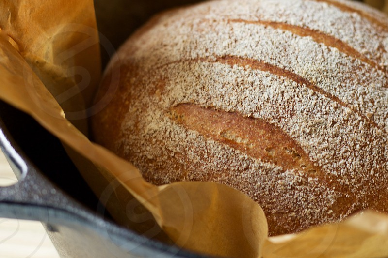 A freshly baked round loaf of sourdough bread on parchment paper in a cast iron Dutch oven photo