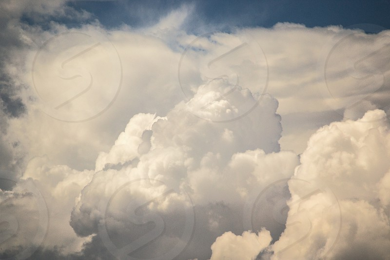 white cumulus clouds photo