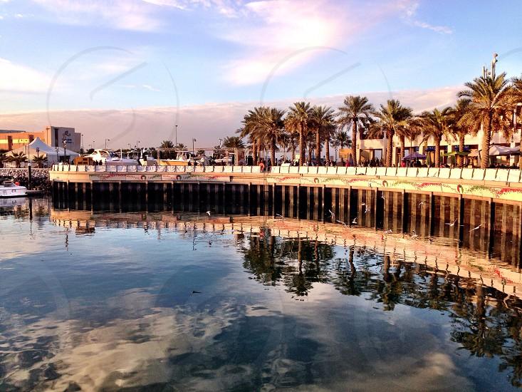 Leading Line LisAm Marina Reflection Palm Trees Water Sky Cloud  photo