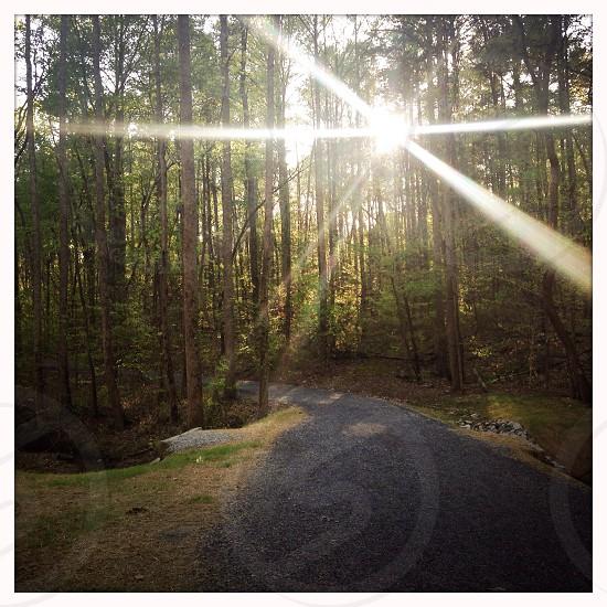 Trail sun flare photo