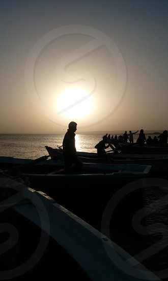 sunset boat silhouette bird photo