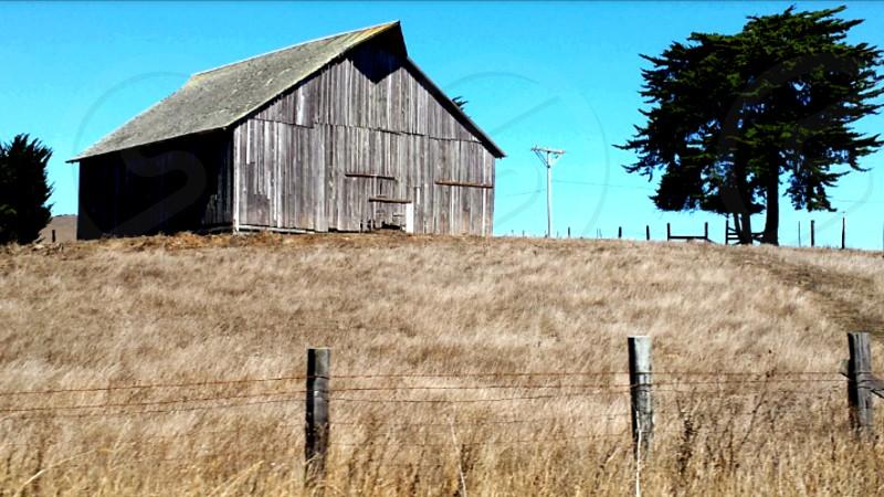 Petaluma Ca. photo