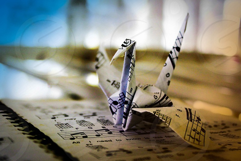 origami crane folded from sheet music paper photo