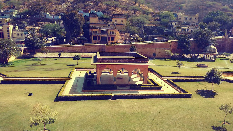 Amer_fort heritage green nature  plants  wild  beautiful  fort  building  architecture  restoration photo