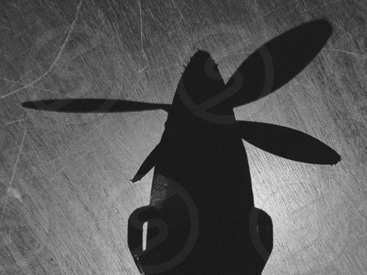 Shadow plane propeller overheaddark black and white looming flight crop duster contrast photo