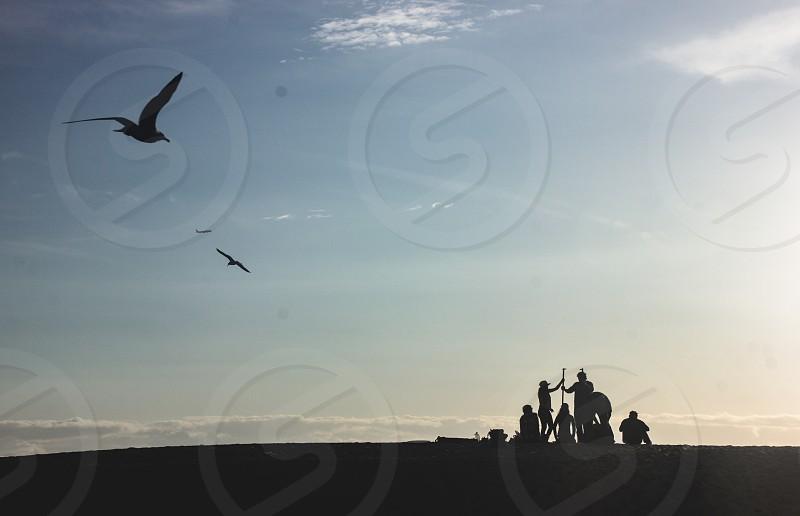 Beach synphony photo