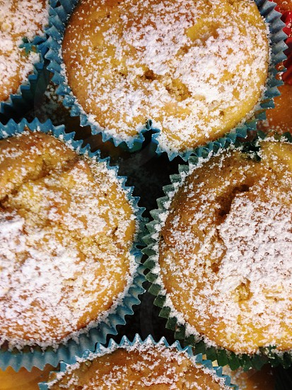 brown round cupcakes photo