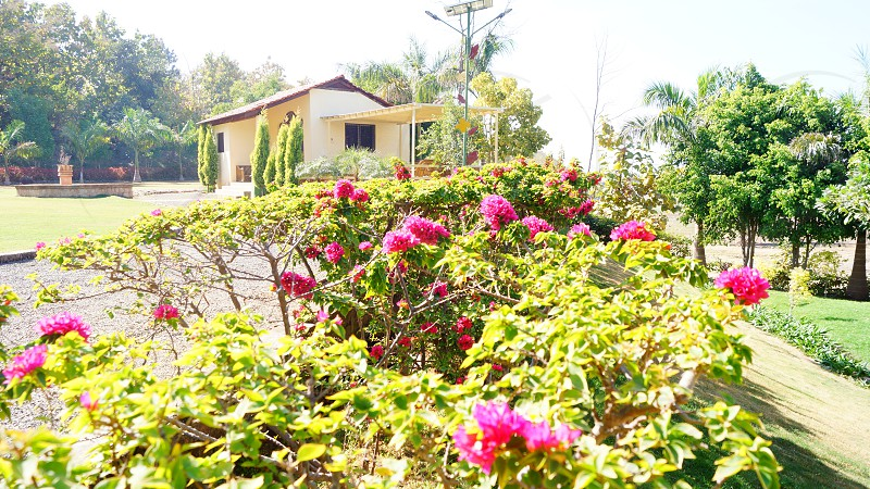 farm house amravati road nagpur photo