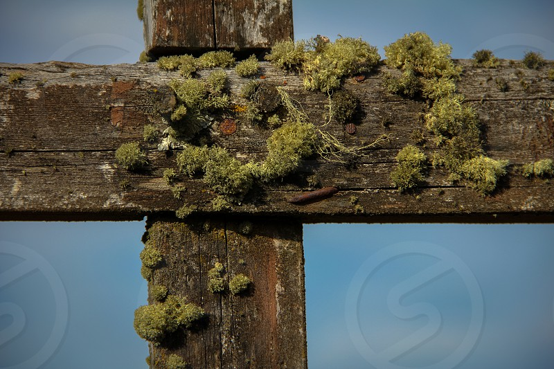 Cross at the municipal cemetery in Rio Tranquilo a settlement in Patagonia southern Chile. photo