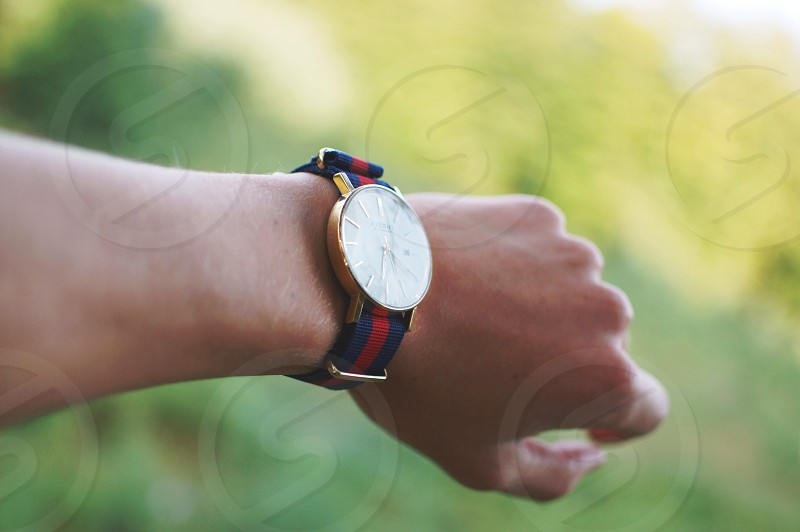 blue and red strapped white round face gold bezel analog wrist watch photo