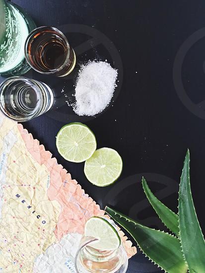 aloe vera beside green lime photo