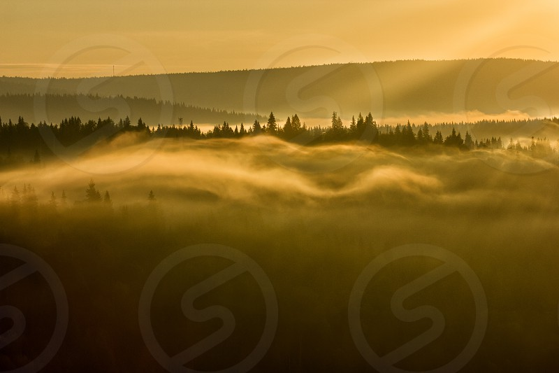 The magic fog photo