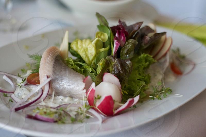 fresh fish spring food dinner photo