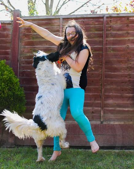 Dancing Dog.  photo