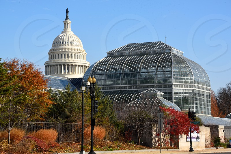 The Botanical Gardens in Washington DC. photo
